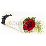 single red rose with green leaves in a bouquet